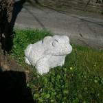 Frosch aus Granit